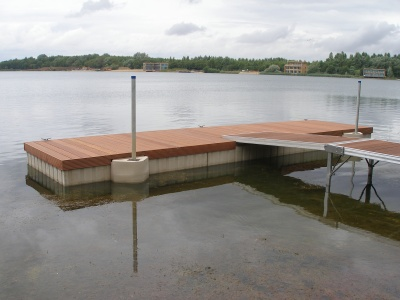 Pontoon and ramp